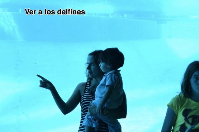 carlos15_2